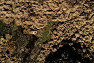 Sphagnum pool on Stake Moss filmed from the air