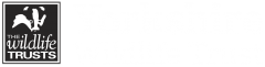 Image of Yorkshire Wildlife Trust logo