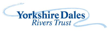 Yorkshire Dales Rivers Trust logo