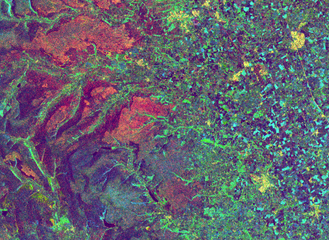 Satellite image of land cover